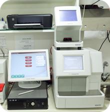 בדיקות מעבדה
