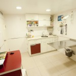 """בי""""ח לחיות מחמד חדר טיפולים"""
