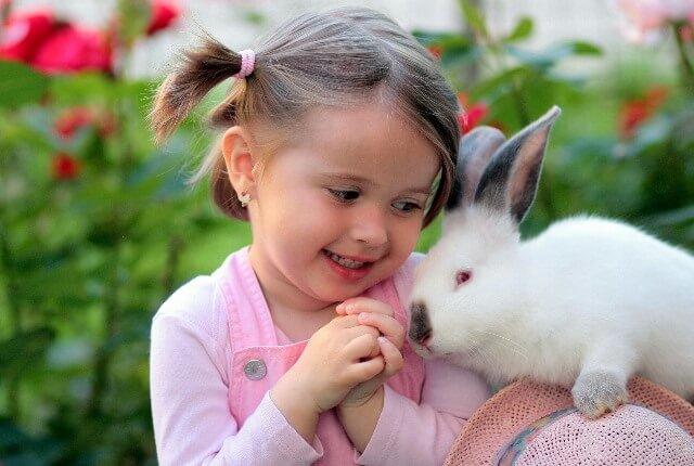 ארנבון בית עם ילדים