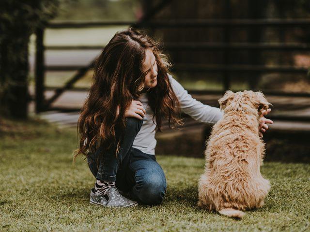 כלב טיפולי עם ילדה