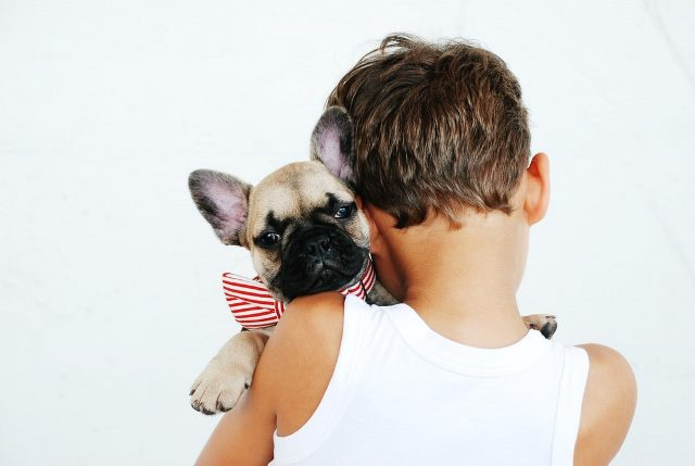 ילד עם כלב טיפולי